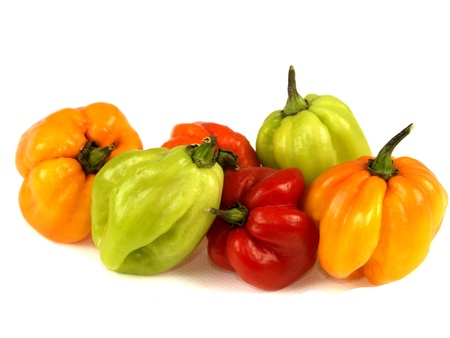 bonnet up: Scotch Bonnet Chillies