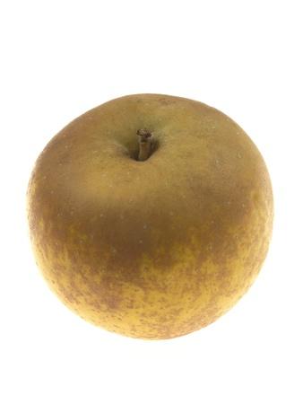 russet: Russet Apple