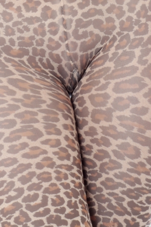 leopard print lingerie: Model Released. Sexy Young Woman Wearing Tights Stock Photo