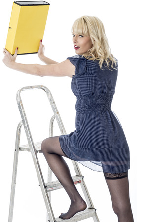 Model Released. Sexy Young Business Woman Climbing Ladder photo