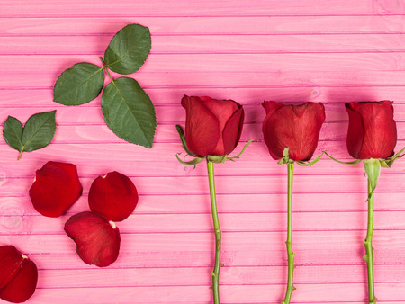 Valentines Day Traditional Romantic Red Roses On A Pink Background