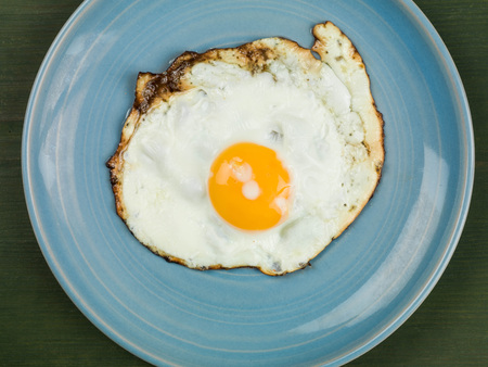 breen: Single Fried Egg on a Blue Plate Against a Green Background