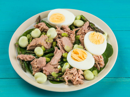 Tuna Fish Salad with Broad Beans Boiled Eggs and Asparagus Against a Blue Background