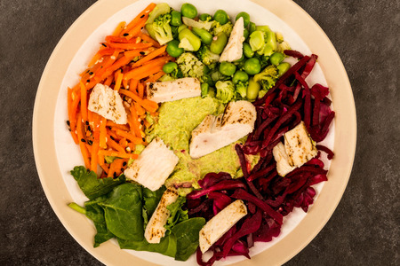 Asian Style Chargrilled Chicken Salad With Red Cabbage Carrots Edamame Beans and Hummus Against A Black Tiled Background