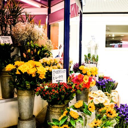 Indoor Flower Seller or Florist in a Shopping Mall With Sunflowers, Roses, Hypericums and Plants Stok Fotoğraf