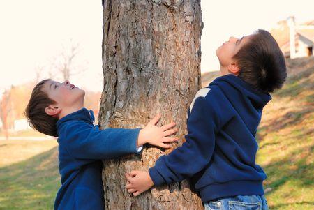 huge tree: Boys hugging a tree