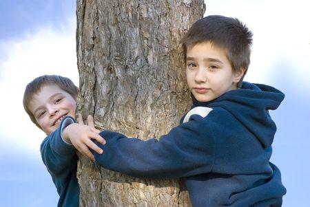 Boys hugging a tree photo