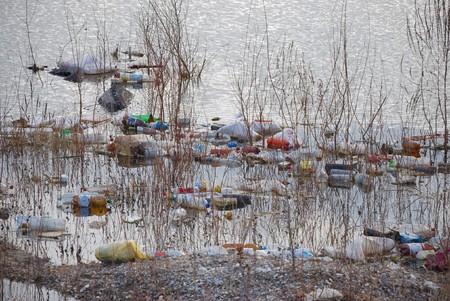 mundo contaminado: Basura flotante contaminantes de agua en un estanque