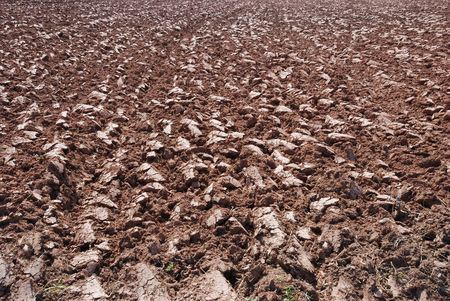 Background made of plowed ground on a sunny day. Stock Photo - 4618340