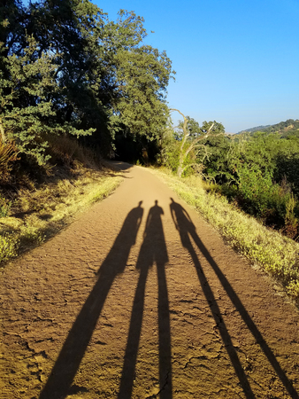 Long shadows of three people on the dirt road that leads into the wood.