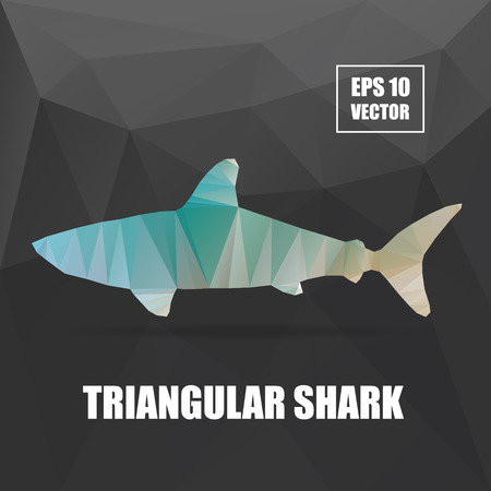 Shark illustration. Shark triangular vector illustration. Polygonal animal series Vector