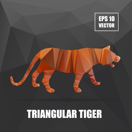 triangular eyes: Poly design. Tiger illustration. tiger vector illustration. polygonal animal series. Tiger body vector isolated, geometric modern illustration