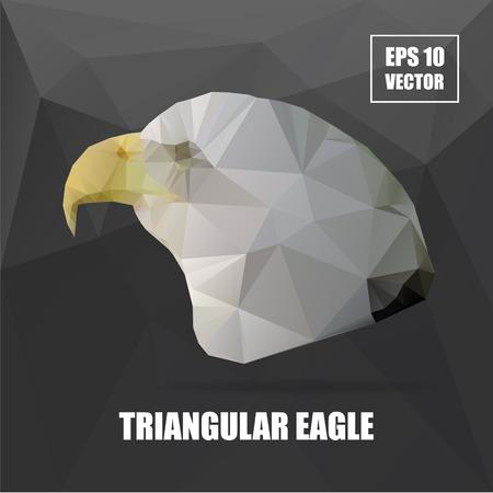 triangular eyes: Geometric eagle on Triangle Pattern Background. Polygonal animal series