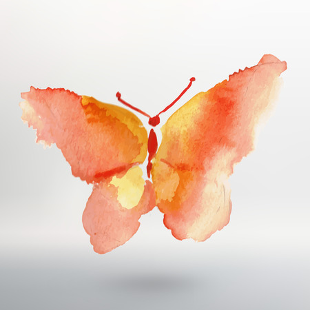 butterfly isolated: Butterfly watercolor drawing. Vector art isolated on white.