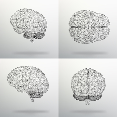 Vector illustration Set human brain. Ilustrace