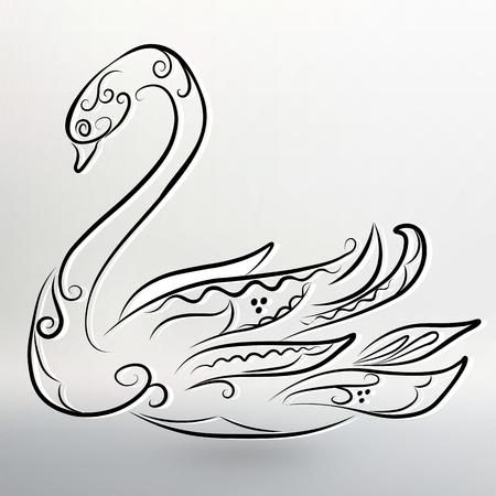 black swan: Vector illustration of Abstract black swan.