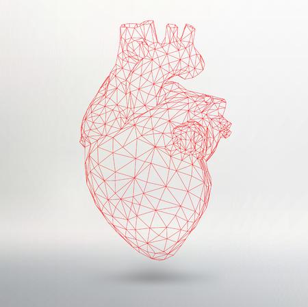 創造的な人間の心の背景の概念。イラスト eps 10 あなたの設計のためのベクトルします。  イラスト・ベクター素材