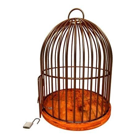 fil de fer: cage dorée avec porte ouverte