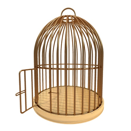 cage animals: 3d golden cage with open door