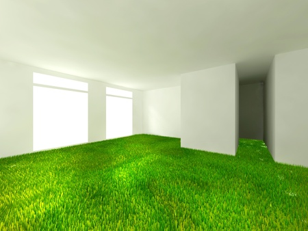 grass in room