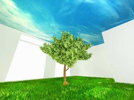 conceptual harmless room photo
