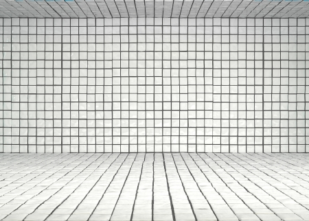 wall and floor covered with white glossy tiles photo