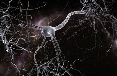 encephalon: Neuron space, concept of neurons and nervous system