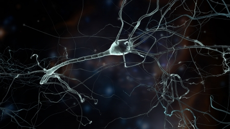 encephalon: Neuron cells network, concept of neurons and nervous system Stock Photo
