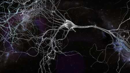 Neuron cells network, concept of neurons and nervous system Stock Photo