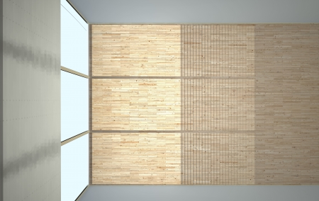 abstract hall  interior with laminate flooring Stock Photo - 19098074