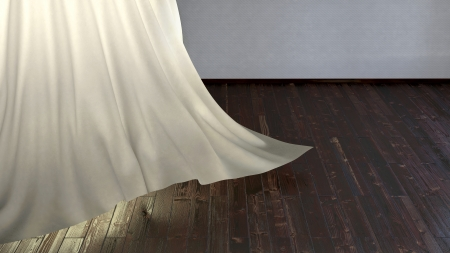 Darkwood flooring and abstract light shines through the fabric photo
