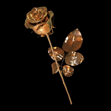 single rose made of fine gold isolated on black Stock Photo - 22471508