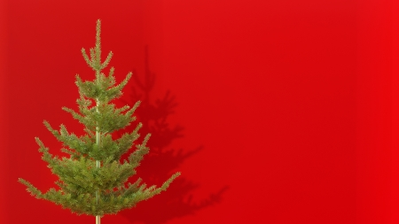 artifical: artifical christmas tree in abstract interior with red wall