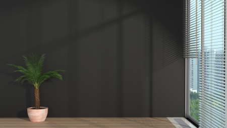 abstract modern interior with sunlight, plant and black wall photo