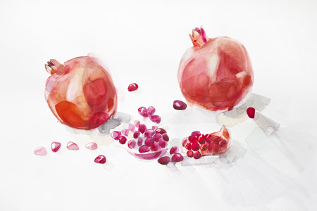 ripe pomegranates painted with watercolors on white background photo