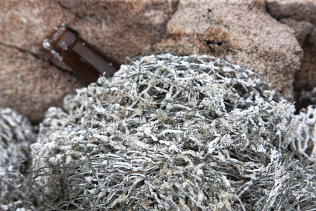 fishermans net: old dry fishermans net covered with sea salt and a bottle