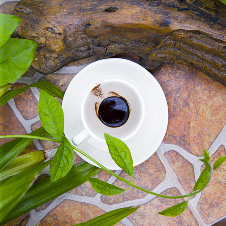 caffee: empty white espresso coffee cup in natural surrounding Stock Photo