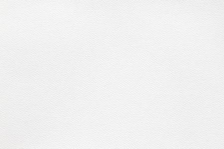 kitchen scraps: white bumpy high quality watercolor paper close up texture