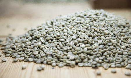 sorted: green raw coffee beans ready to be sorted out