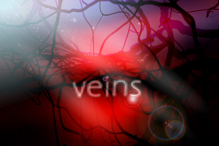 vessels: blood vessels vector illustration with blurred background and lighting effects Illustration