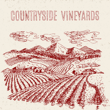 tuscany vineyard: hand drawn vector rural landscape with fields and farms Illustration