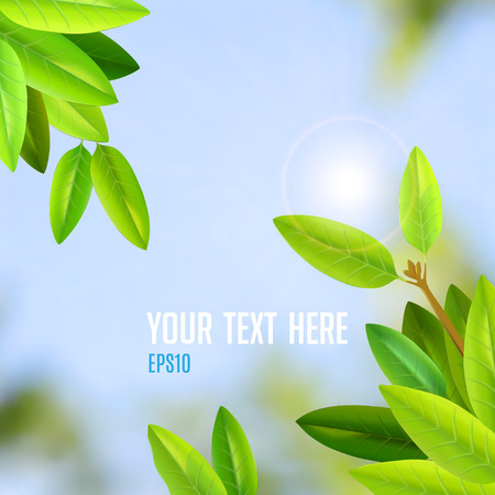 naturalist: gentle green young leaves spring vector background