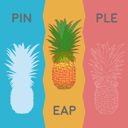 reap: fresh reap tropical fruit illustrated in different styles Illustration