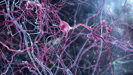 Amazing world of braincells