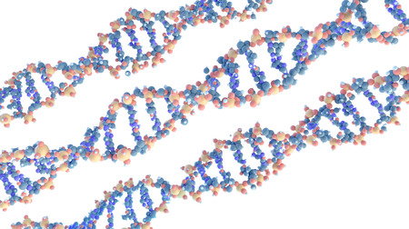 scientific 3D models of DNA spiral molecules on white