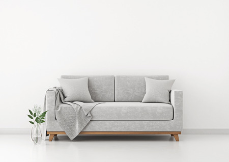 Interior with sofa, plants and plaid on empty white wall background. 3D rendering. 스톡 콘텐츠