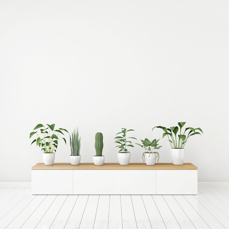 White nordic style interior with plants in pots on wooden console and empty space on the wall. 3d rendering.