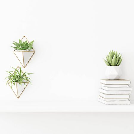 Interior wall mockup with plants in pots, succulent and pile of books standing on the shelf on empty white background. 3D rendering, illustration.