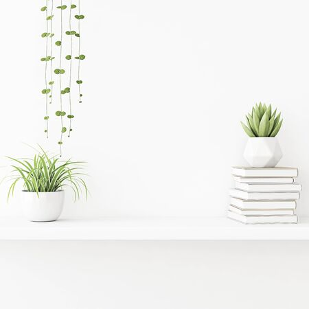 Interior wall mockup with plants in pots and pile of books standing on the shelf on empty white background. 3D rendering, illustration.