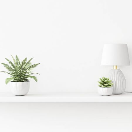Interior wall mockup with green plants in pots and lamp standing on the shelf on empty white background. 3D rendering, illustration. 스톡 콘텐츠